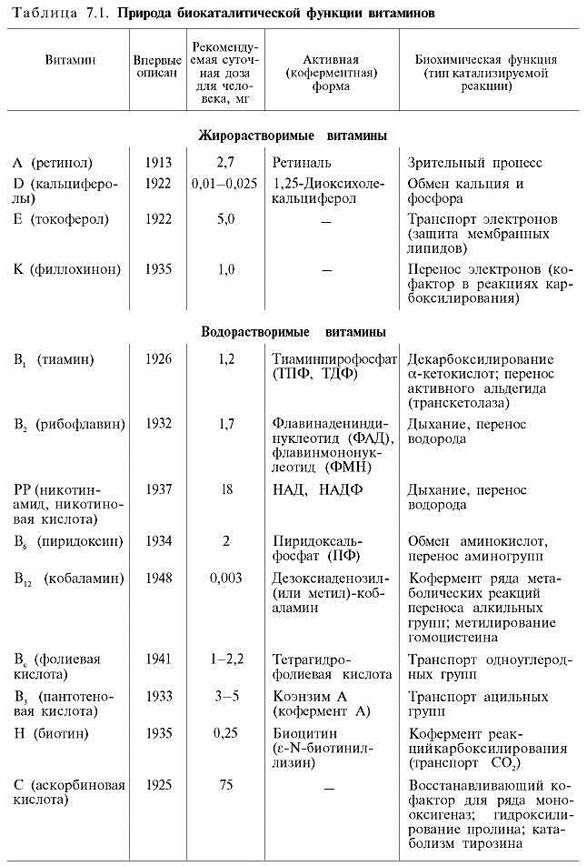 По витамины шпаргалки биохимии