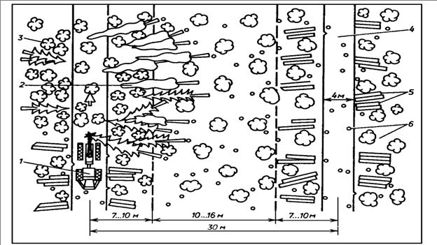 Характеристика производственного процесса и выпускаемой  1 харвестер 2 поваленные бензопилой деревья 3 растущий лес 4 волок 5 сортименты 6 пни