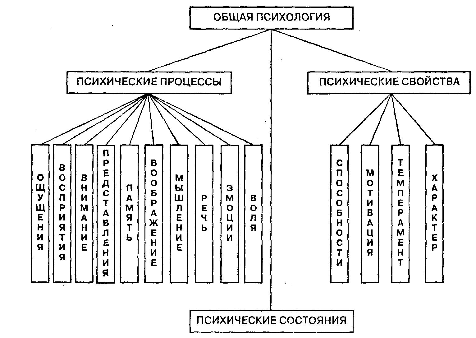 Реферат общая психология ее структура 2581