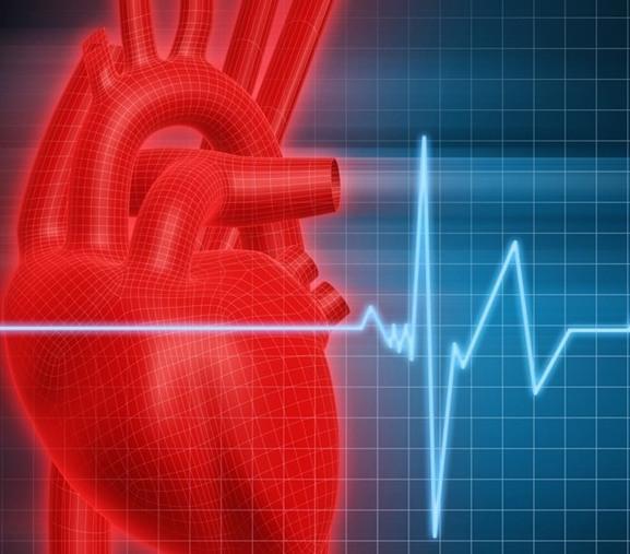 Учащенное сердцебиение после запоя