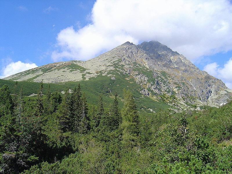 Реферат про горы карпаты 2401