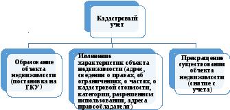 Теоретические положения ведения государственного кадастрового  Кадастровый учет осуществляется в связи с образованием или созданием объекта недвижимости далее постановка на учет объекта недвижимости