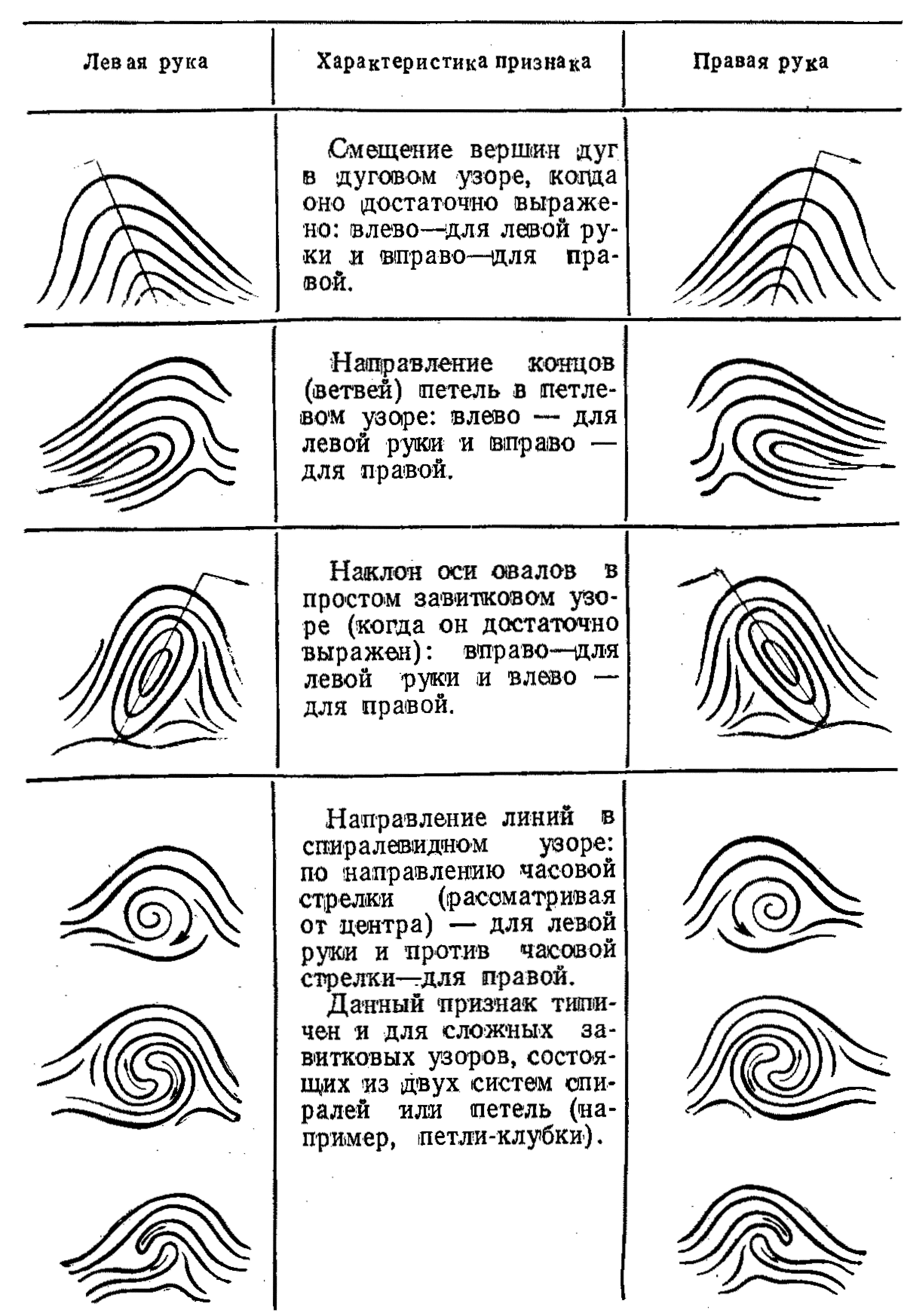 Схематическая зарисовка следа пальца