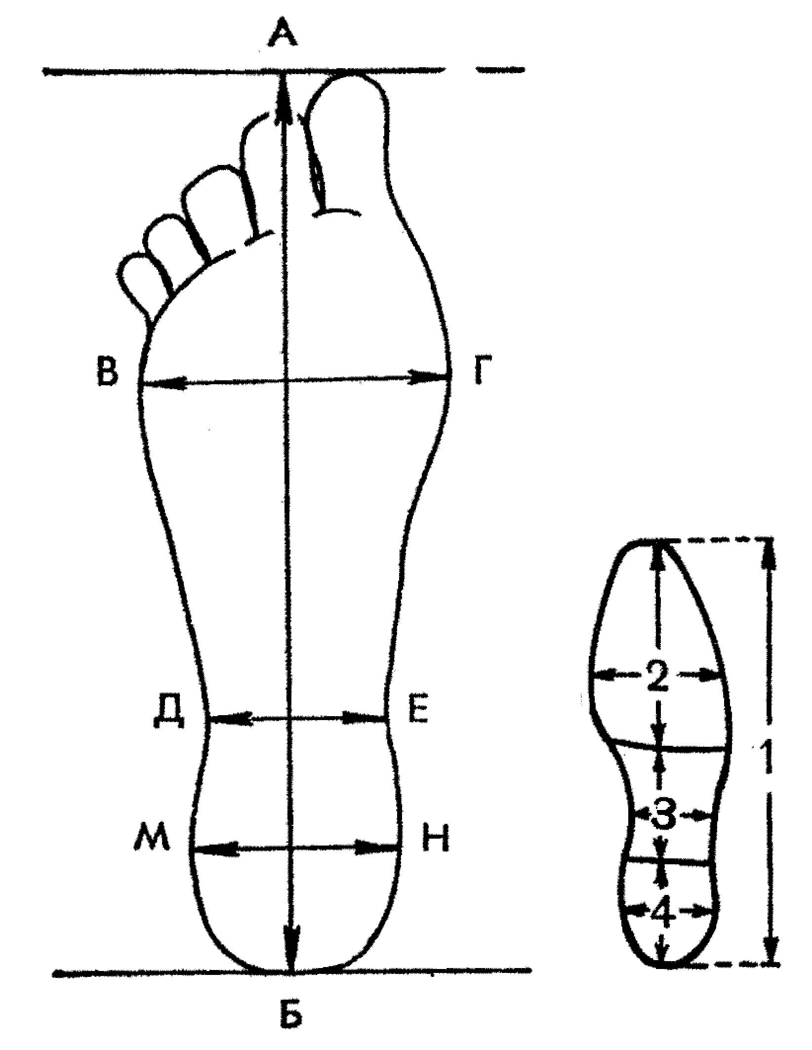 Схематическая зарисовка следа пальца фото 531