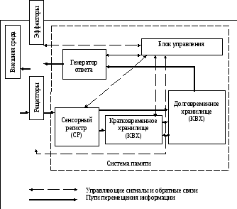 Информационные модели памяти реферат 4998