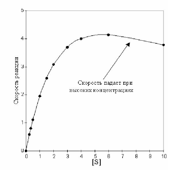 enzyme kinetics using invertase