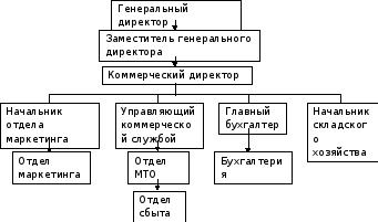 Организационная структура управления организации Основными задачами бухгалтерии являются формирование полной и достоверной информации о хозяйственных процессах и результатах деятельности предприятия