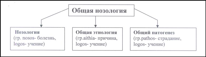 Реферат предмет и методы патологии 1386