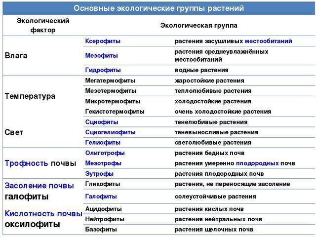 Экологические группы растений реферат 3481