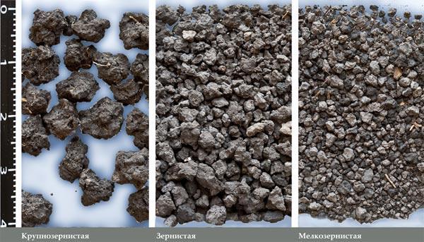 Структура почвы и ее значение.