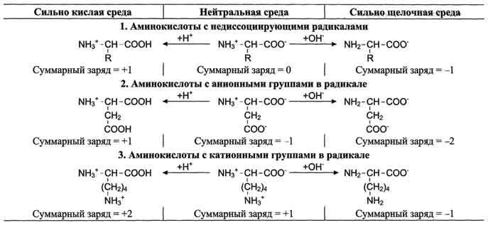 Пептиды, содержащие модифицированные аминокислоты андекалин для инъекций заказать