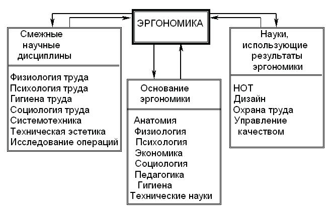 Структурная схема науки эргономики