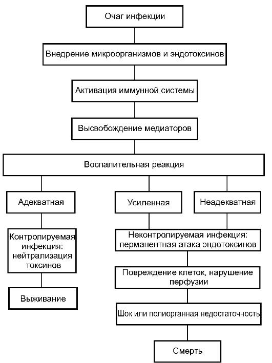 Клиническая картина гнойного воспаления коленного сустава