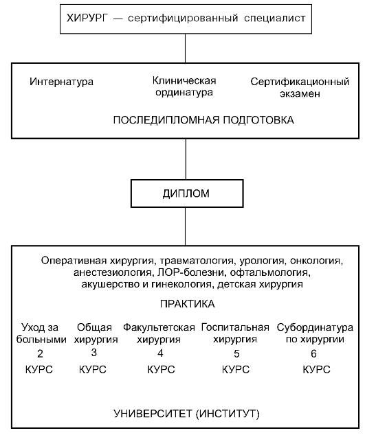 Система подготовки хирурга Хирургические дисциплины в вузе