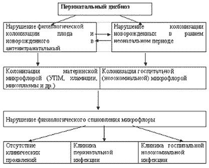 Смешанные инфекции мочеполовых органов (микст-инфекции)